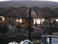 Canopy 02